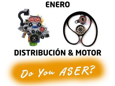 Las 12 causas ASER – Distribución y Motor